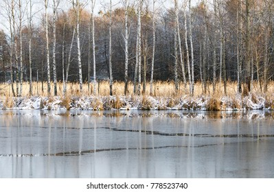 Winter landscape of partly frozen lake and birch trees