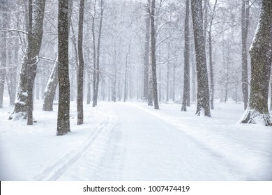 Winter landscape. Path in the Park in the heavy snow