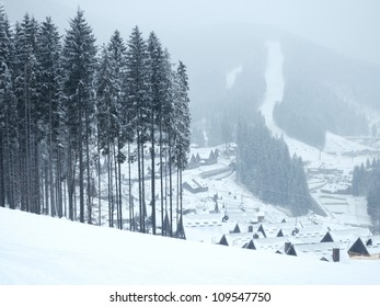 winter landscape with pine forest and mountain village on background