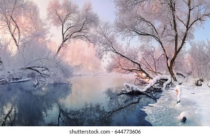 Winter landscape in pink tones,with calm winter river, surrounded by trees.Winter forest on the river at sunset. Belarus landscape with snowy trees, beautiful frozen river with reflection in water.