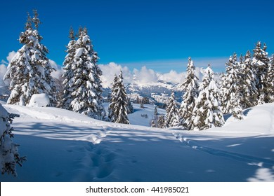 Winter landscape in Prarion close to Chamonix, Les Houches, France