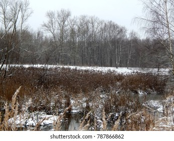 Winter landscape with a river in a cold frosty day