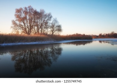Winter landscape with river, reeds and trees. Composition of nature.