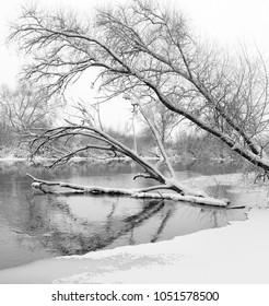 winter landscape. River with snowy banks