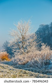 winter landscape with a river and trees covered with hoarfrost