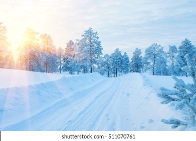 Winter landscape. Winter road through a snow-covered forest at sunset.