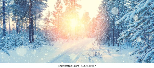 Winter landscape. Winter landscape with  road through  snowy forest