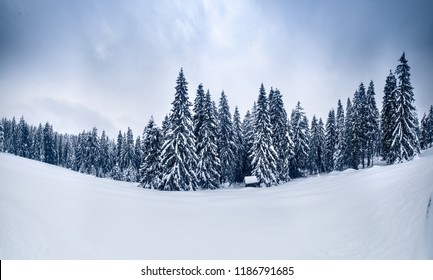 Winter landscape. Winter scene. Snowfall in mountains. Snowy winter nature.