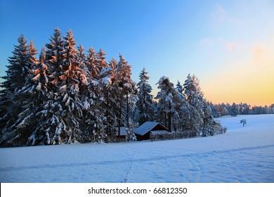 Winter Landscape Schaffhausen Switzerland