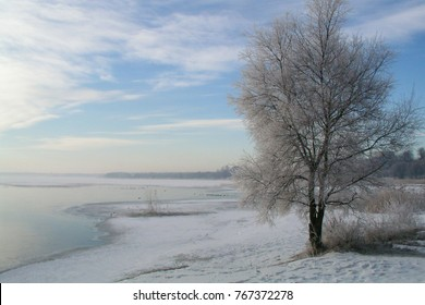 Winter landscape, snow, branches in the snow, trees in the snow, birch in the snow. The frozen lake. Sunny. - Shutterstock ID 767372278