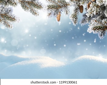 Winter landscape with snow .Christmas background with fir tree branch and cones