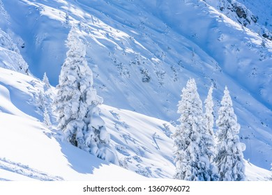 Winter landscape with snow covered trees and Alps in Seefeld in the Austrian state of Tyrol. Winter in Austria