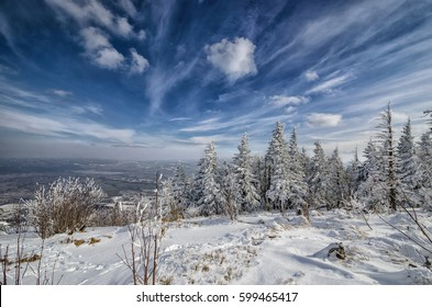 Winter landscape with snow covered trees. Valley of Zywiec from Skrzyczne mountain in Silesian Beskids, Poland