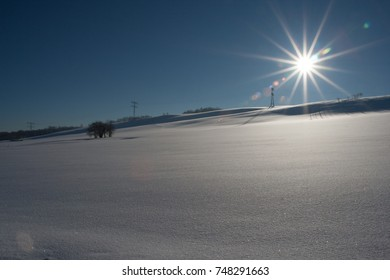 winter landscape with snow on a sunny day