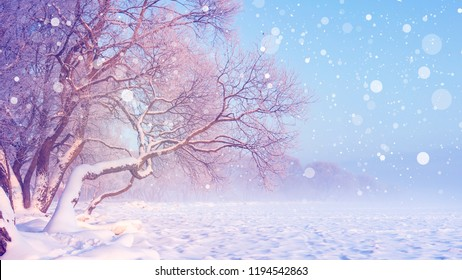Winter landscape in snowfall. Christmas background. Frosty trees. Snowy winter scene. Winter fairytale.
