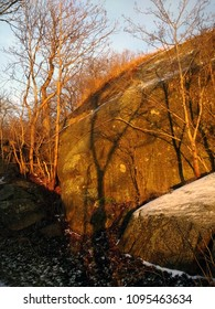 Winter landscape, stones, trees and snow during the sunset. Larvik, Norway.