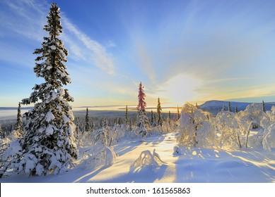 winter landscape, stubba nature reserve, laponian area, laponia, norrbotten, lapland, sweden