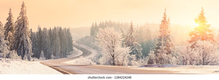 Winter landscape at sunrise, Winter Forest,  Winter road and trees covered with snow, Germany - Panoramic Shot