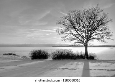 Winter landscape with sunset fiery sky. Composition of nature. Monochrome