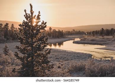 Winter landscape in Swedish Lapland.