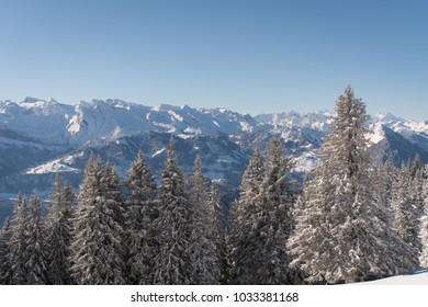 Winter landscape in the Swiss Alps on a sunny day with lots of fresh snow and snow covered mountain peaks and many fir trees