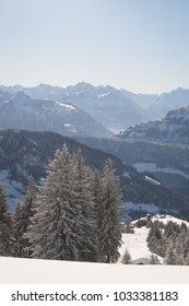 Winter landscape in the Swiss Alps on a sunny day with lots of fresh snow and snow covered mountain peaks and coniferous trees