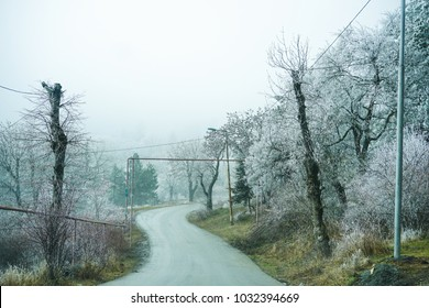 Winter landscape - trees covered with ice and rural road in Georgia, Caucasus area