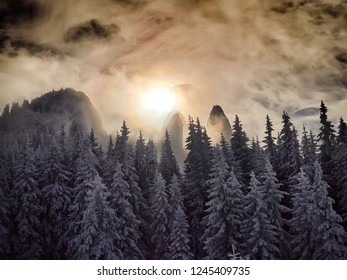 winter landscape with trees and mountains covered with snow and frost in the sunrise light