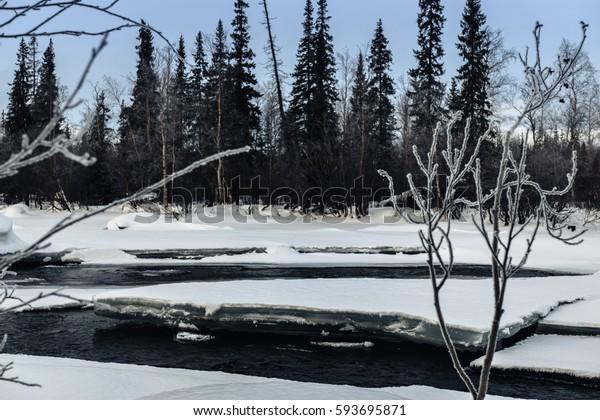 Winter landscape with unfrozen river in Russian Lapland, Kola Peninsula