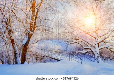 Winter landscape in warm tones - colorful frosty trees and snowy bridge in the winter park