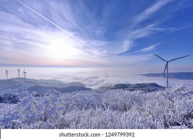 Winter landscape with wind turbines and trees on a snow covered field