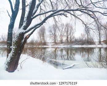 Winter landscape.Trees and bushes on the Bank of the winter river.
