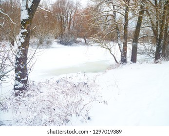 Winter landscape.Trees and bushes on the shore of a frozen lake.