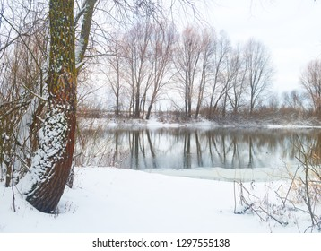 Winter landscape.Trees and bushes on the shore are reflected in the freezing river.