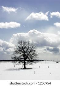 winter in LAtvia
