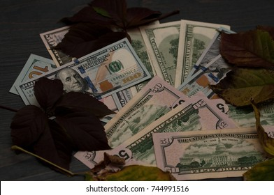 Winter leaves in the autumn style with dollars.
