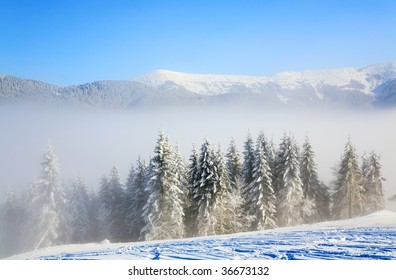 winter misty mountain landscape with rime and snow covered spruce trees