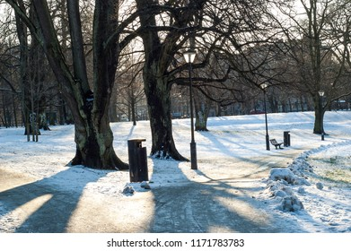 Winter morning in Gothenburg Park