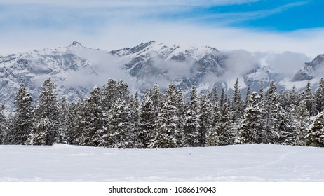 Winter in the mounatins, snow covered scenery in Banff National Park Alberta Canada