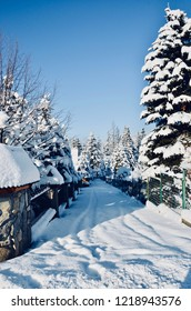 Winter mountain countryside background