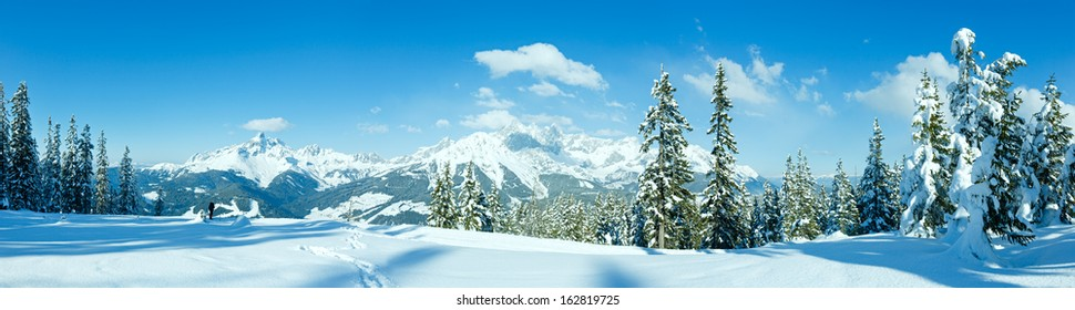 Winter mountain fir forest snowy panorama and woman tourist (top of Papageno bahn - Filzmoos, Austria)