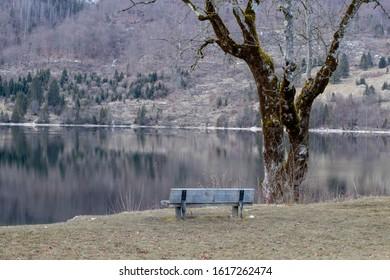 Winter Mountain Lake Bohinj Slovenia
