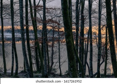 Winter Mountain Lake Forest Reflection