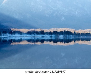 Winter Mountain Lake Reflection Bohinj Slovenia