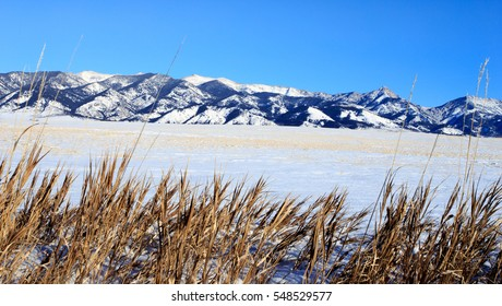 Winter mountain landscape in Bozeman, Montana with Bridger Mountains in background.