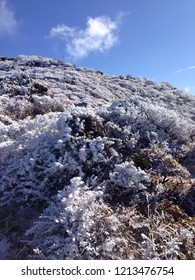 A winter mountain landscape of Jeju island hallasan mountain with snow