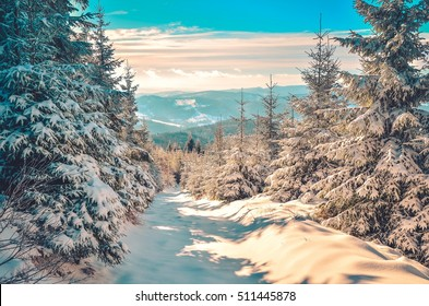 Winter mountain landscape. Winter mountain trail on a sunny day.