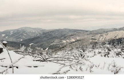 winter mountain scenery with hills covered by frozen forest and small mountain valley  from hiking trail near Cubonov hill in Moravskoslezske Beskydy mountains on czech-slovakian borders