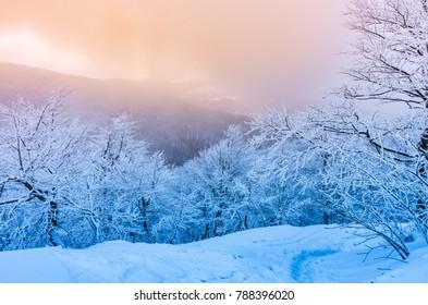 Winter mountains panorama in snow, sunset, Bieszczady, Poland