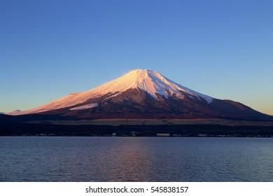 Winter Mt. Fuji dyed in the morning sun